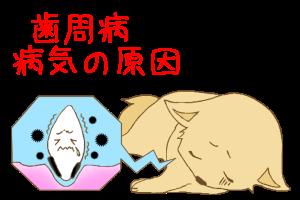 歯周病が様々な病気の原因に