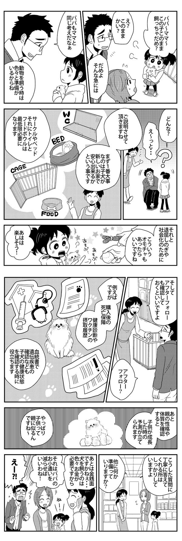 ポメラニアン漫画3