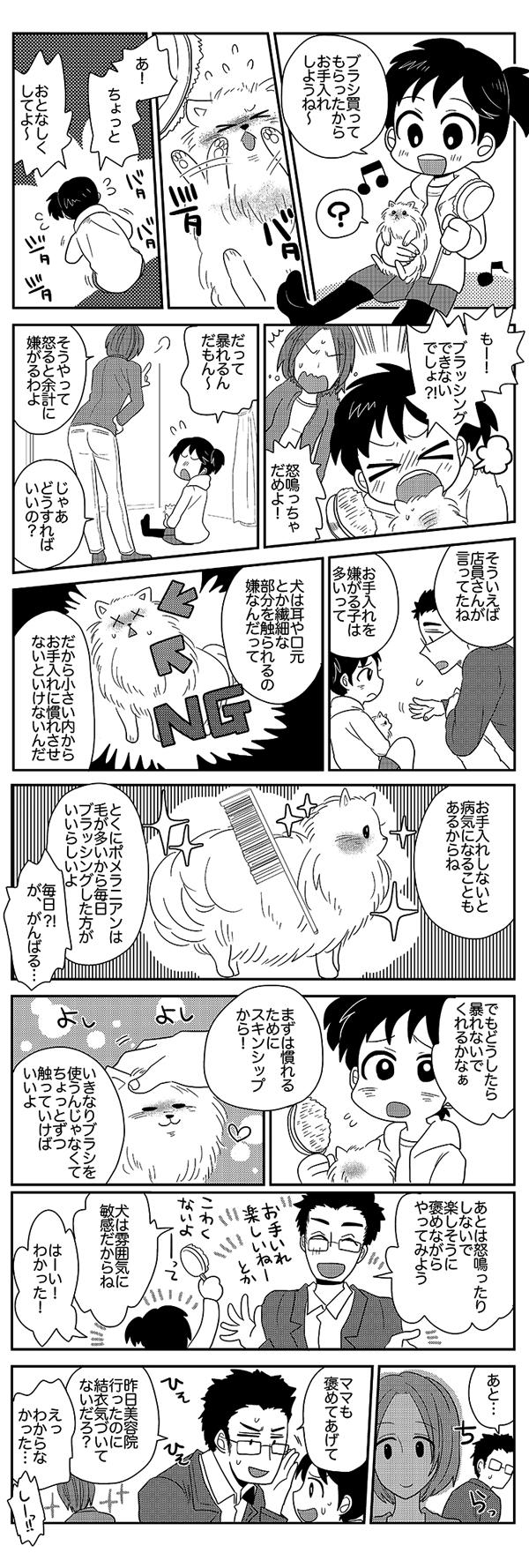 ポメラニアン漫画7